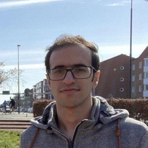 Saeid Amouzad Mahdiraji