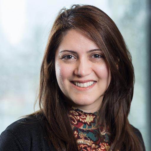 Elnaz Sarkheyli